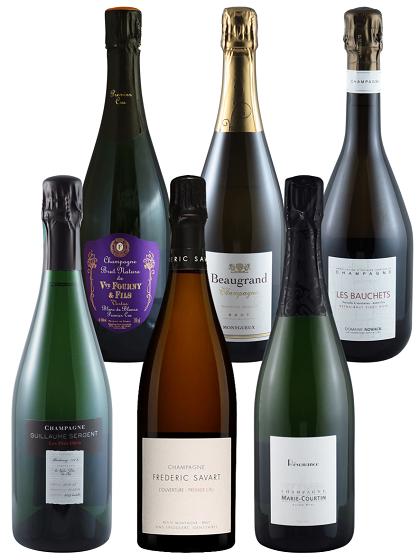 Champagner Degustations Paket 3x Chardonnay, 3x Pinot Noir