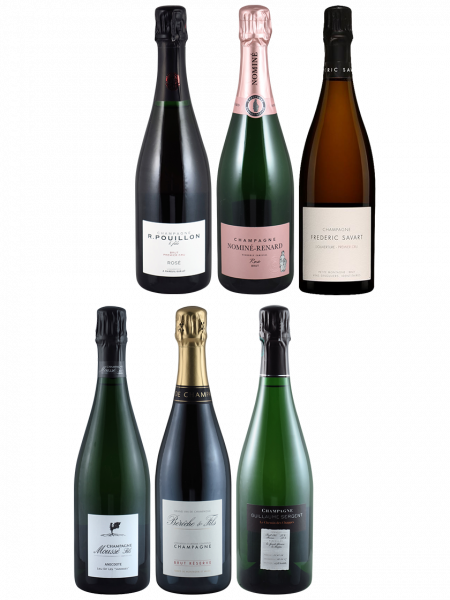 Champagner Degustations-Paket 4x Weiss, 2x Rosé