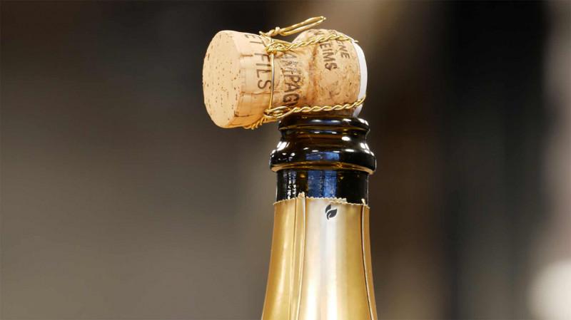 SECLI Weinwelt Champagner Korken